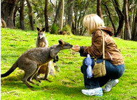 Debbe Duffy with the Kangaroos