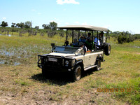 On One of Our Two Daily Game Drives Across the Bush